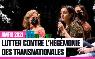 Quelles stratégies contre l'hégémonie des transnationales ? – Conférence AMFIS2021